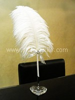 Genuine Feather Signature Pen (Medium) ( 2 Pens +2 Holders )